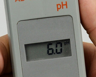 pH levels & health
