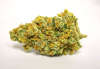 thumb_Good-Meds-Englewood_full_6d5b.jpg