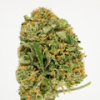 thumb_Rfoe0zJkTdqTm1z070dS_Blue Dream Nug.jpg
