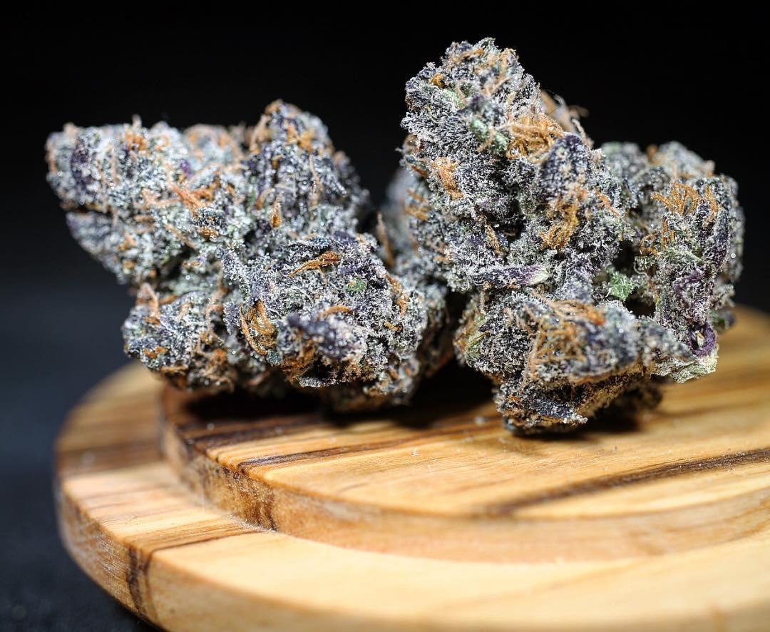 Blue Sherbert Strain Information Cannafo Marijuana