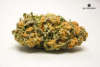 thumb_Good-Meds-Englewood_full_612d.jpg