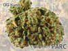 thumb_PARC-Dispensary_full_9af9.jpg