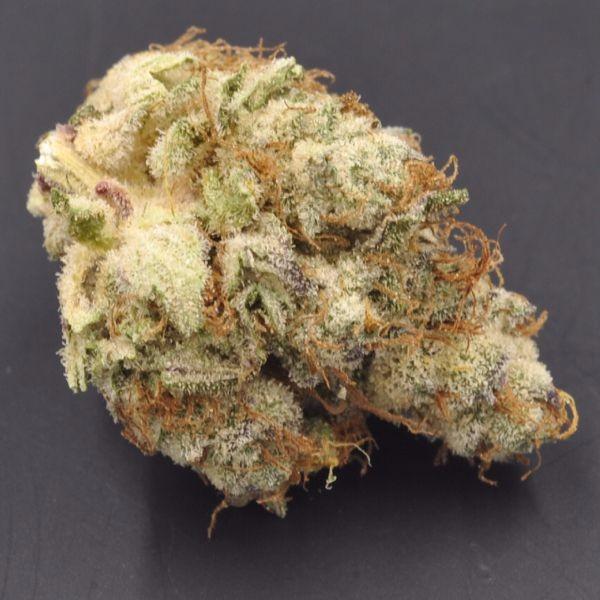 Purple Haze Strain Information | Cannafo | Marijuana